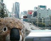渋谷に来ています