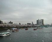 桜橋からの風景