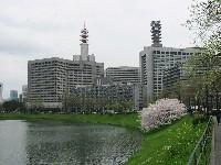 20080330009