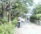 20080505kunitachi01