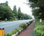 20080505kunitachi05