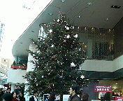 20081213kichi01