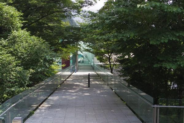 2013kanagawa07
