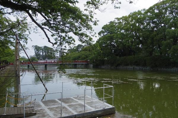 2013kanagawa37